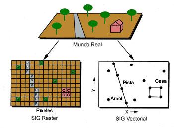 Comparación entre SIG raster y vectorial
